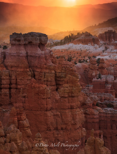 Bryce Canyon Golden Sunrise