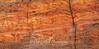 Zion National Park  Checkerboard Mesa Walls