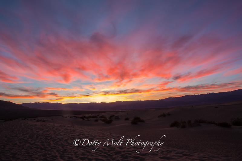 Sunset Mesquite Dunes, Death Valley