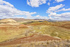 John Day Fossil Beds National Park 2