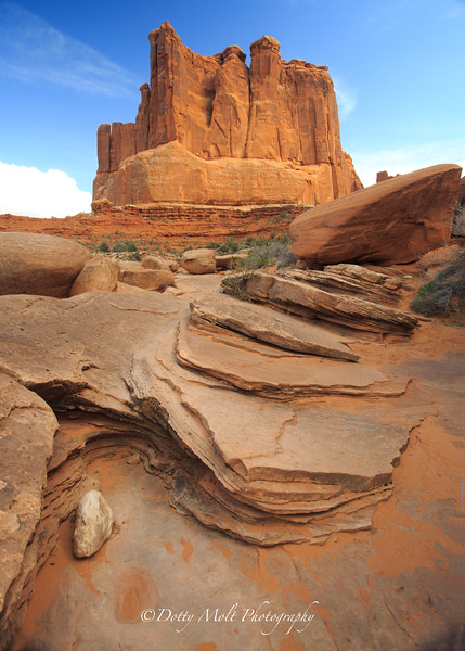 Canyonlands The Organ from Park Avenue