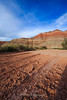 Paria Canyon Dry Cracked Earth