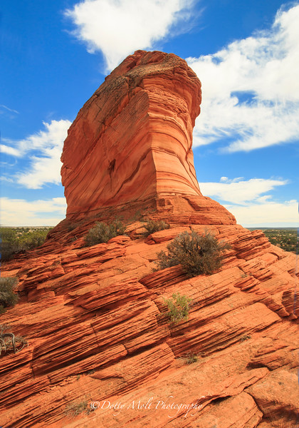 South Coyote Buttes Monolith