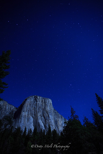 Starry Starry Moonlit Night, El Cap, Yosemite