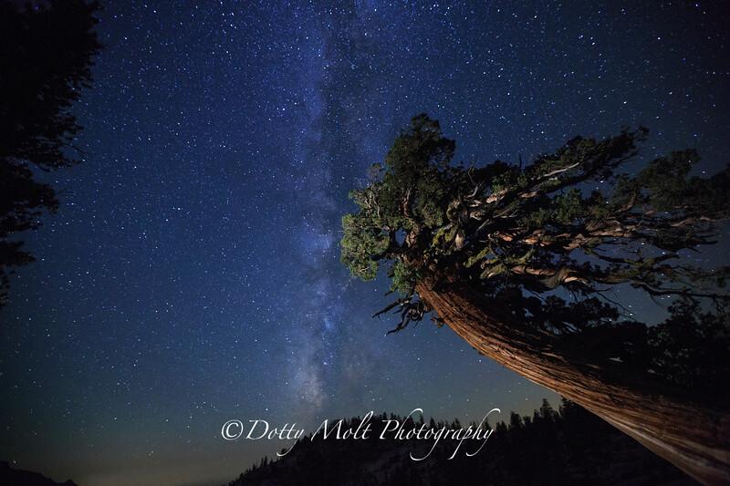 Olmstead Point, Yosemite NP, CA