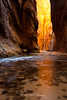 Pillar of Light, Zion