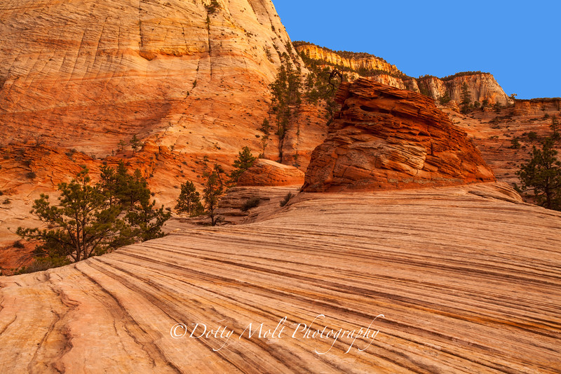 BeeHive in the checkerboard Mesa, Zion NP