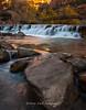 Zion National Park, Virgin River Morning Cascades
