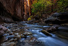 Narrows Zion National Park