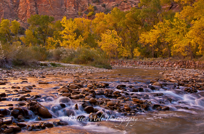 "Virgin River ""Rapids"" Zion"