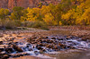 "Virgin River ""Rapids"" Zion"