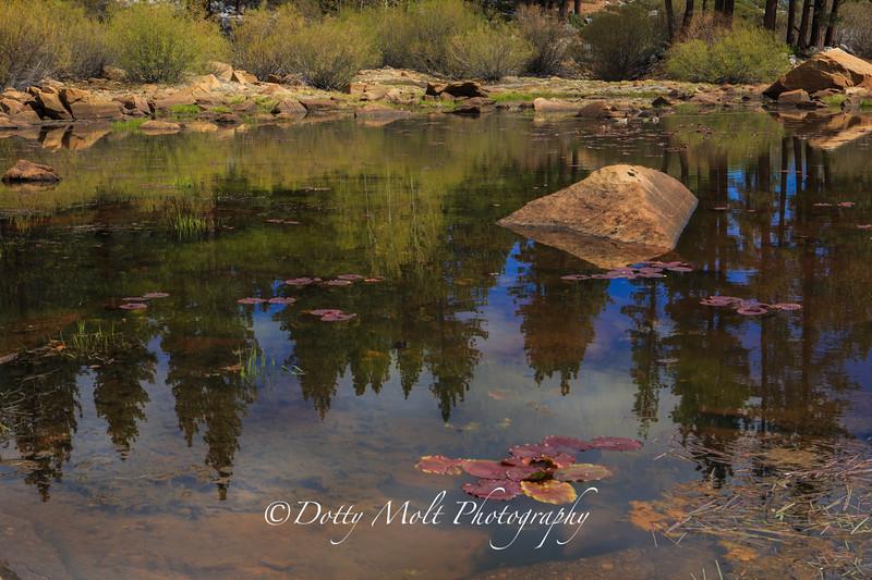 Rock Lake Reflections