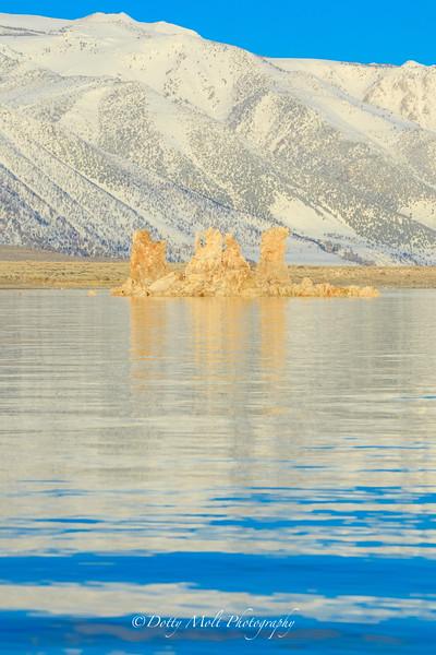 Golden Tufas Mono Lake