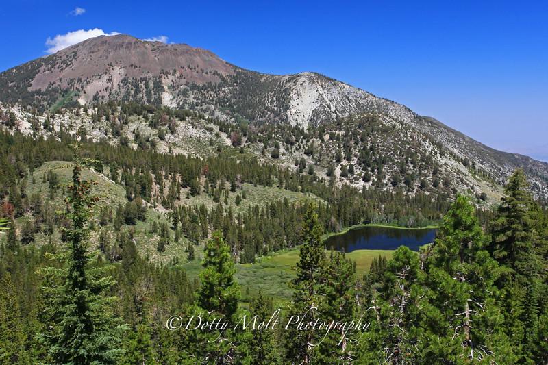 Tamarack Lake From Mt. Rose Trail