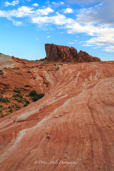 Wavelines, Valley of Fire, Nevada