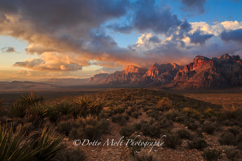 Red Rock Canyon Sunrise
