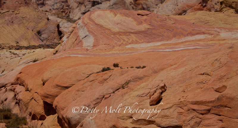 Valley of Fire, Big Rock Candy Mountain