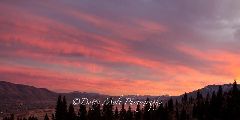 Bands of Pink, Washoe Lake, NV