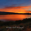 Damonte Ranch Sunset