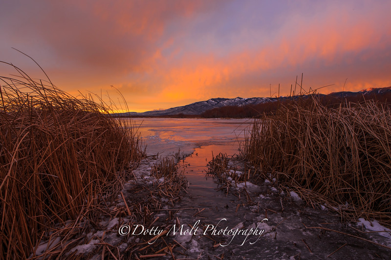Washoe Lake Icy Sunrise