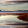Little Washoe Lake, Misty Morning
