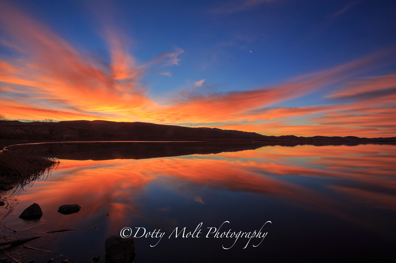 Bird of Paradise Sunrise over Washoe Lake