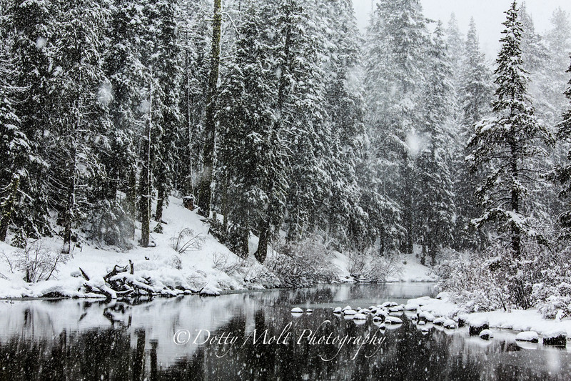 Snowstorm on the Truckee 2