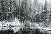 Snowstorm on the Truckee 2