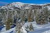 Snowshoeing Chickadee ridge