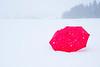 Runaway Red Umbrella