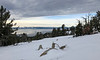 Tahoe from Chickadee