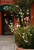 San Francisco Doorway