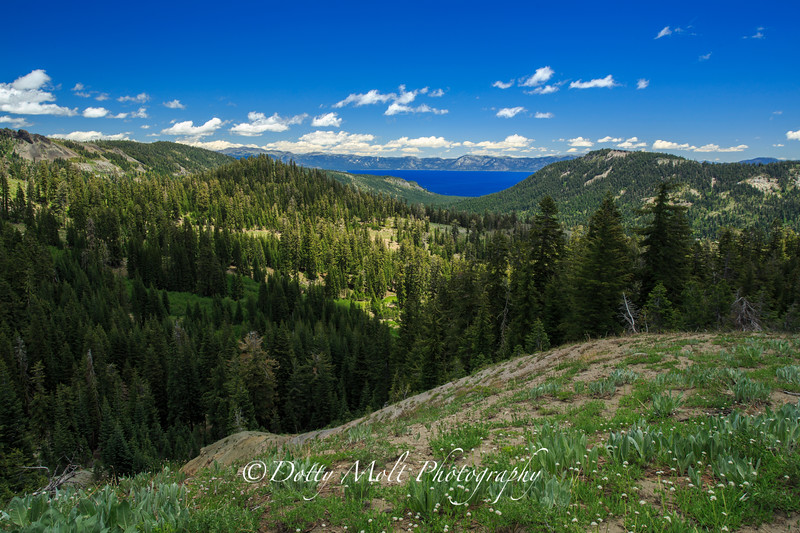 Lake Tahoe from Barkers Pass