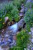 Fairyland, Mt. Rose Wilderness