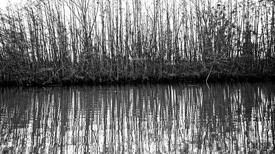 IMGL0034_©Ch  Mouton-1