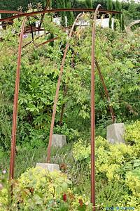 Jardin des plantes 9 C-Mouton