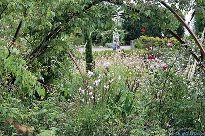Jardin des plantes 2 C-Mouton