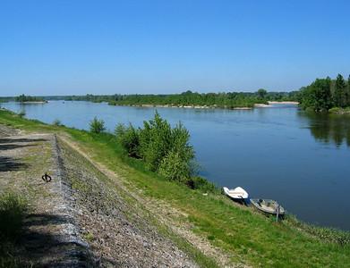 Loire 097 C-Mouton