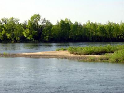 Loire 040 C-Mouton