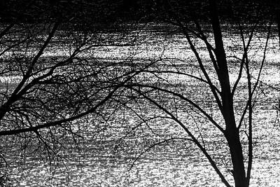 _VV_1867-©Ch-Mouton