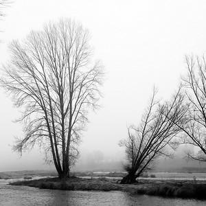 DSCF0192-©Ch-Mouton
