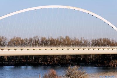 Orleans - Pont de l'Europe 4 C-Mouton