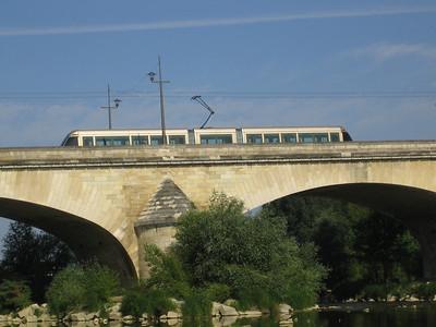 Orléans Bords de Loire 08 C-Mouton