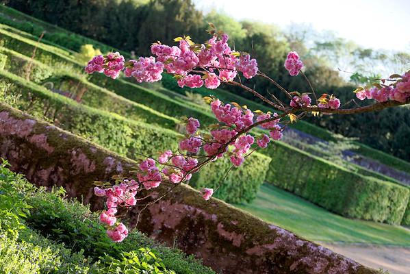 """""""Il n'est pas suffisant de ne pas être aveugle pour voir les arbres et les fleurs. Il faut aussi n'avoir aucune philosophie.  Quand il y a philosophie, il n'y a pas d'arbres : il y a des idées, sans plus"""". - F. Pessoa -"""