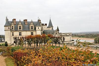 Chateau d'Amboise 3658 C-Mouton