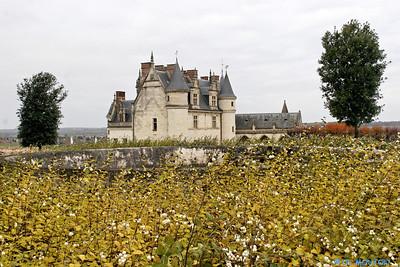 Chateau d'Amboise 3653 C-Mouton