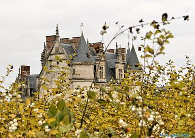 Chateau d'Amboise 3654 C-Mouton