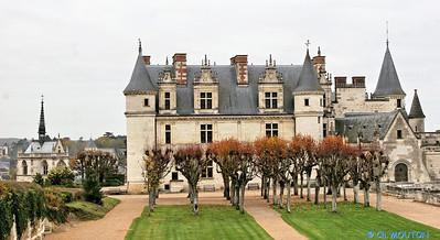 Chateau d'Amboise 3661 C-Mouton