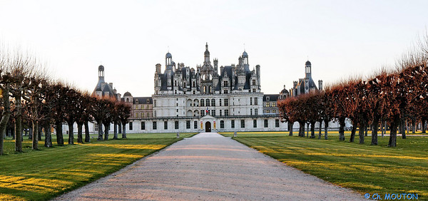 Chateau Chambord 2169 C-Mouton