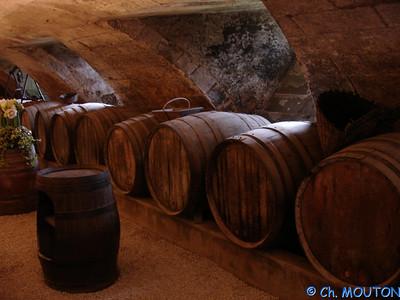 Cave des dames Chenonceau 51 C-Mouton